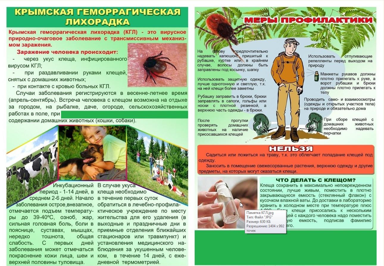 Крымская Геморрагическая Лихорадка!!!!