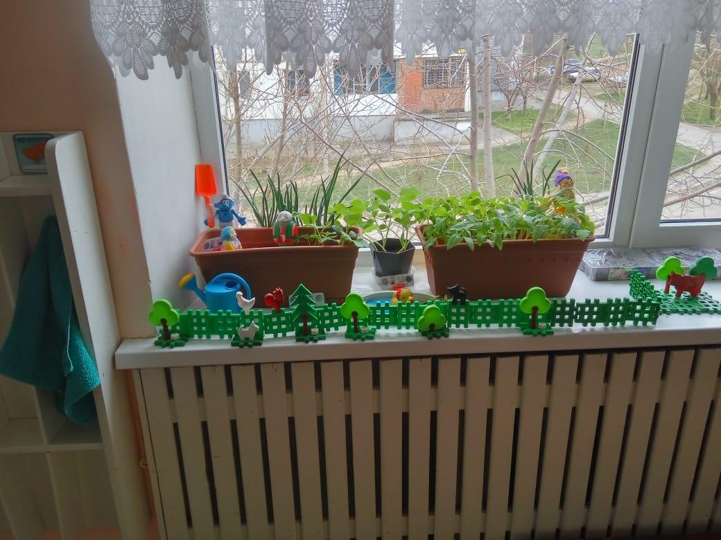 Огород — «Деревенский дворик»!