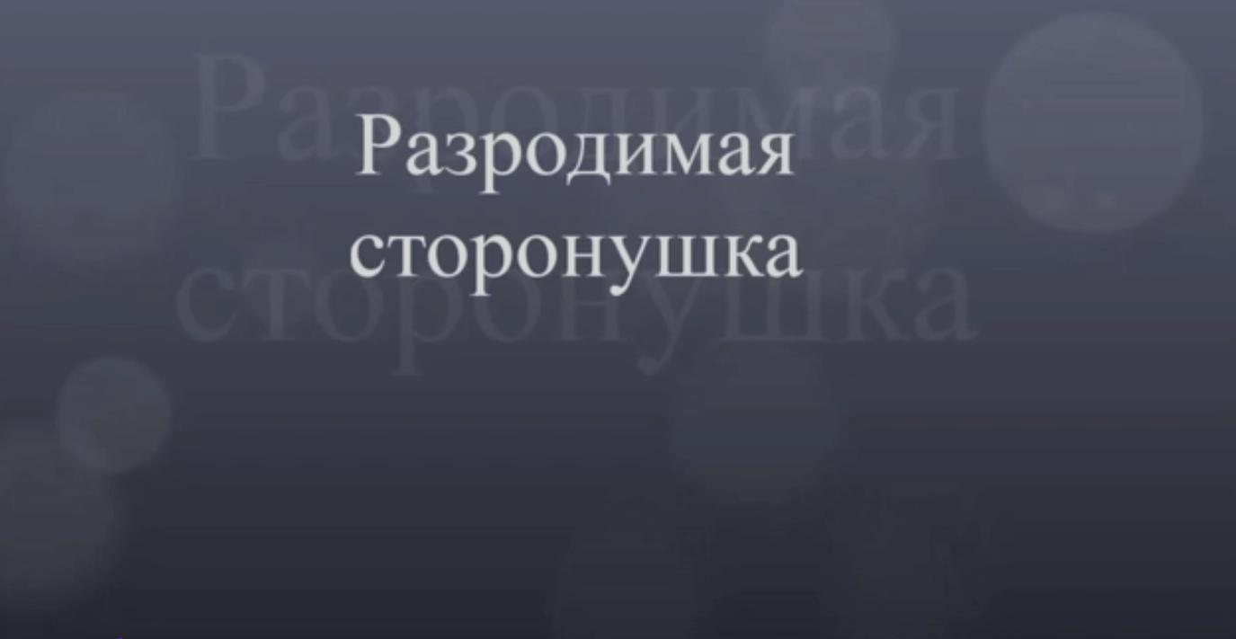 Видеофильм: «Разродимая сторонушка»